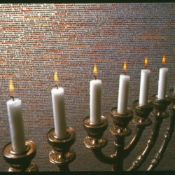 pinkasova-synagoga-napisy